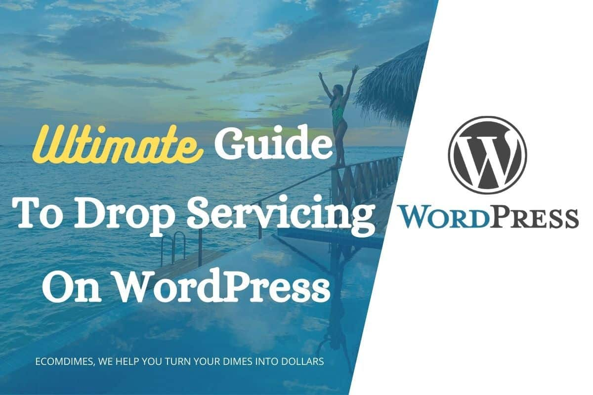 drop servicing on wordpress