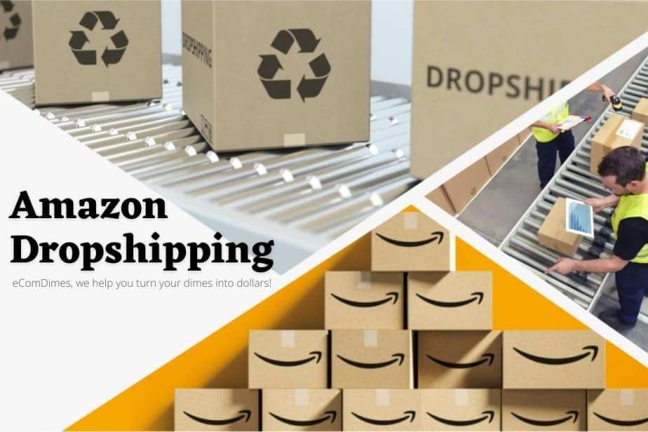 amazon dropshipping. How much do amazon dropshippers make?